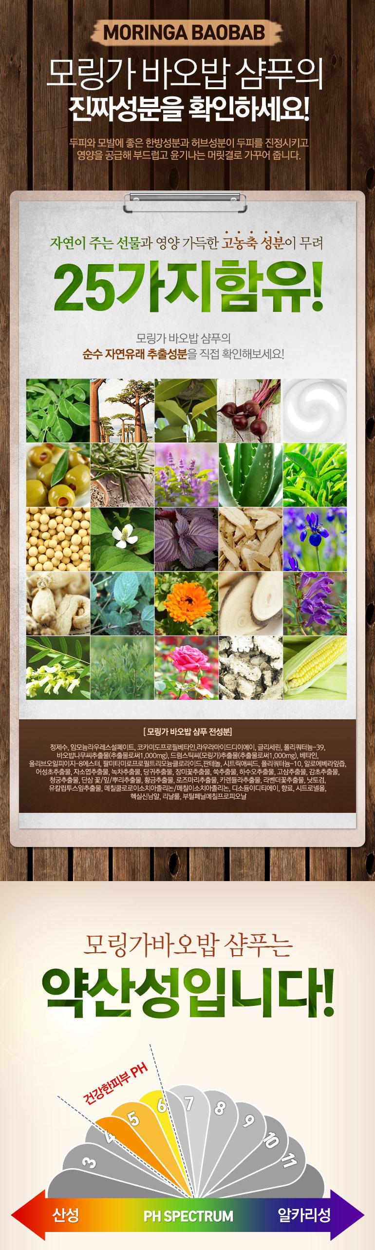 Moringa_05-01.jpg